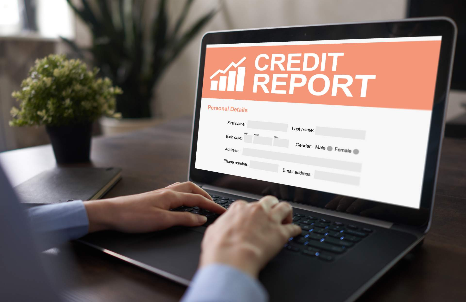 Credit report screenshot on a laptop